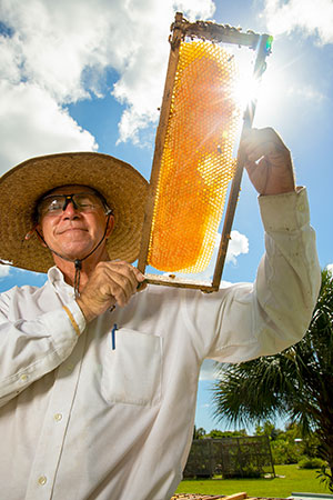 Best, a professional bee wrangler as well as a beekeeper,
